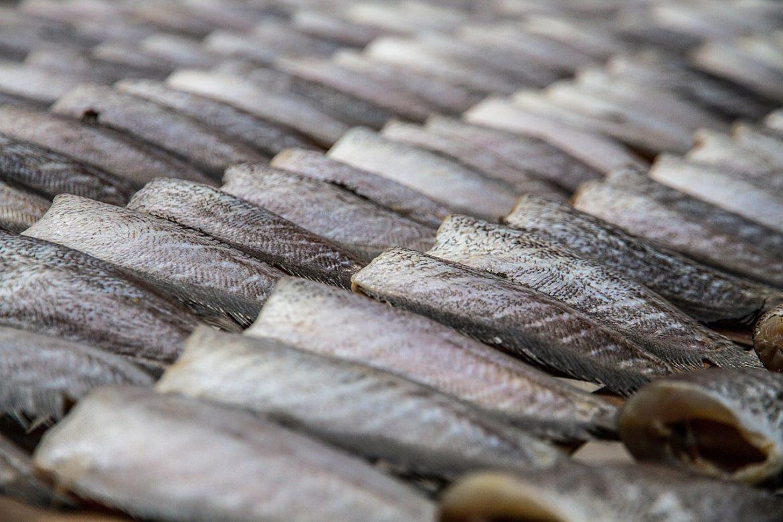 Tout savoir sur la spécialité Stockfish, des filets de poisson séchés